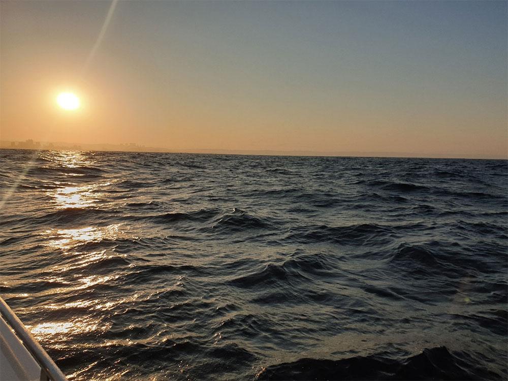 The vast open ocean.